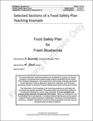 Model Food Plan - Fresh Blueberries For 5 Participants