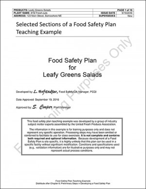 Model Food Plan - Leafy Greens Salads For 5 Participants